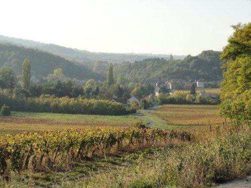 Burgundissa on kuvankaunista maalaismaisemaa.