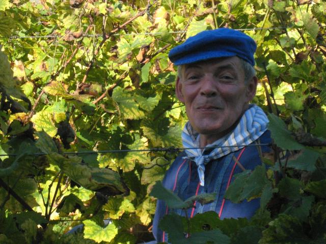Aidot viinimatkat, viinimatkat Ranska, Italia ja Espanja