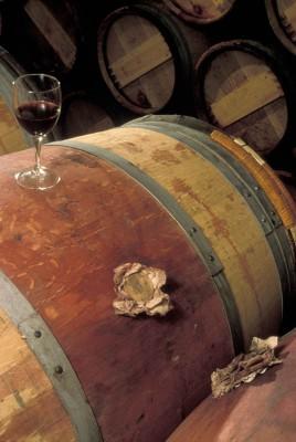 Viinikulttuuri Iruleguy, Madiran ja muut lounais-ranskan viinit