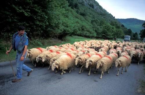 Baskimaa on autenttista elämää Ranskassa ja Espanjassa