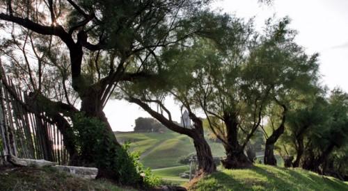Maaseutu Ranskan ja Espanjan baskimaalla on vehreätä