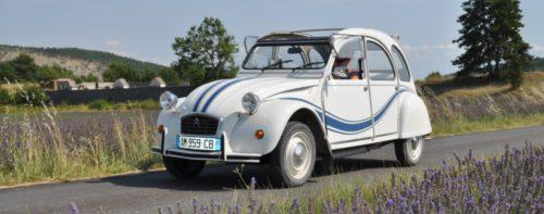 Vintage-autolla laventelipelloilla.